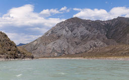 Mountain river Katun in summer, Altai,Russia Royalty Free Stock Image