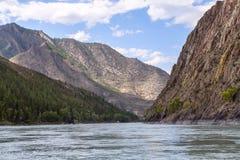 Mountain river Katun in summer, Altai,Russia Stock Photo