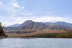 Mountain river Katun in summer, Altai,Russia Stock Photography