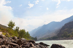 Mountain river Katun in summer, Altai,Russia Royalty Free Stock Photos
