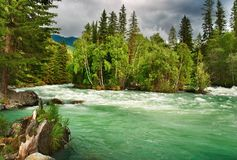 Mountain river Kucherla Stock Images