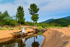 Mountain river on Lake Baikal Royalty Free Stock Photo