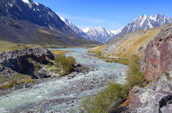 Mountain river landscape in Altay Stock Images