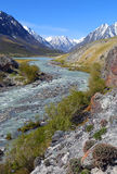 Mountain river landscape in Altay Stock Photos