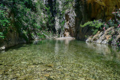 Mountain river. Landscape crystal clear mountain river Stock Images