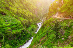 Mountain river landscape from footpath Royalty Free Stock Photo