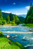 Mountain river. Landscape with mountains trees and a river in front Royalty Free Stock Photography