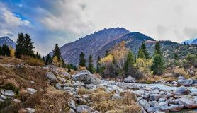 Calm mountain river royalty free stock images