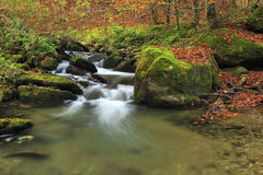 Mountain river in late Autumn Stock Images