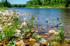 Mountain River Lemeza in the southern Urals. Stock Image