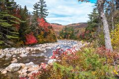 Mountain river lined with colourf trees on a partly cloudy autumn day