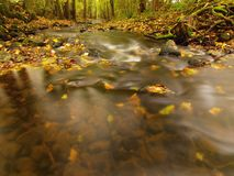 Mountain river with low level of water, gravel with first colorful leaves Mossy rocks and boulders on river bank Arkivfoto