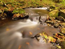 Mountain river with low level of water, gravel with first colorful leaves Mossy rocks and boulders on river bank royaltyfri fotografi
