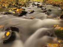 Mountain river with low level of water, gravel with first colorful leaves. Mossy rocks and boulders on river bank. Royalty Free Stock Image