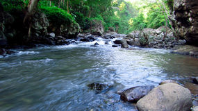 Mountain river in the middle of forest, in Tasikmalaya, West Java, Indonesia Stock Image