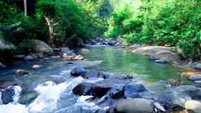 Mountain river in the middle of forest, in Tasikmalaya, West Java, Indonesia Stock Images