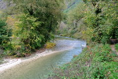 Mountain river in the middle of green forest in italy Stock Photo