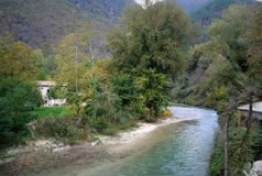 Mountain river in the middle of green forest in italy Royalty Free Stock Photography