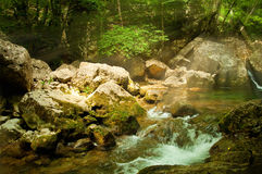 Mountain River in the morning sun, summer Royalty Free Stock Images