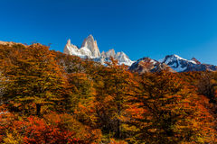 Mountain River and Mount Fitz Roy. Patagonia, Argentina. Stock Image