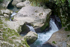 Mountain river. River in the mountains of Abkhazia Royalty Free Stock Images