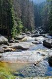 Mountain river. River in the mountains of the Tatras. Slovakia Stock Photos