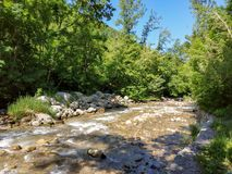 Mountain river in Almaty Royalty Free Stock Image
