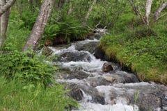 Mountain river near Mardalfossen waterfall, Norway Stock Image