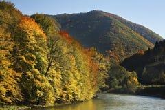 Mountain and river near Zilina. Slovakia Stock Image