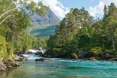 Mountain river,  Norway Royalty Free Stock Photo