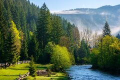 Mountain River On A Misty Sunrise. Gorgeous Landscape With Fog Rolling Above The Trees In Fresh Green Foliage On The Shore In The Royalty Free Stock Photo