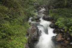 Mountain River. A Picture from a summer walk in Rila Mountain, Bulgaria royalty free stock photos