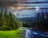 Mountain river in pine forest day and night Royalty Free Stock Photography