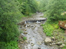 Mountain river Prut. Very beautiful Prut river in the Carpathian mountains of the Ukraine in the summer Royalty Free Stock Image
