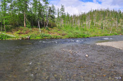 Mountain river on the Putorana plateau. Royalty Free Stock Photography