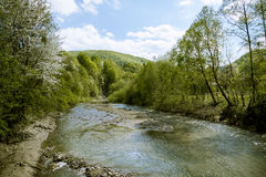 Mountain river rapid flow Stock Photography