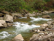 Mountain river. Rapid flow, thresholds and boulders.A ручьевая trout is led in such small rivers.Memorizable landscapes Royalty Free Stock Photography