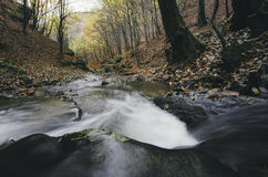 Mountain river with rapids in autumn forest Stock Photo