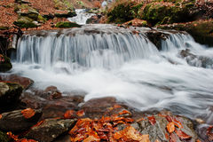 Mountain river rapids at autumn majestic forest with fallen leav Royalty Free Stock Photos