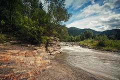 Mountain river with rapids in Carpathia Stock Image