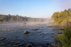 Mountain river with rapids in the morning mist Royalty Free Stock Images