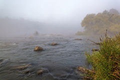 Mountain river with rapids in the morning mist Stock Image
