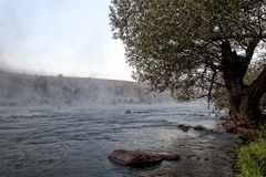 Mountain river with rapids in the morning mist Stock Photos