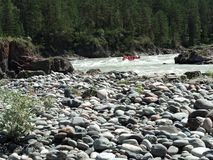 Mountain river with rapids stock image