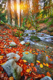 Mountain river with rapids and waterfalls at autumn time time Stock Photo