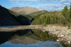 Mountain river and reflection in the water peaks. Royalty Free Stock Image