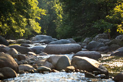 Mountain river in Restonica Valley Royalty Free Stock Images