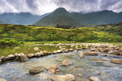 Mountain river with rice terrace Stock Image