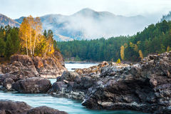 Mountain river with rocks Royalty Free Stock Photo