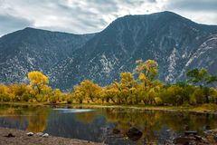 Mountain river with rocks Stock Photos